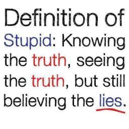 Stupid indonesian blogwalker.jpg